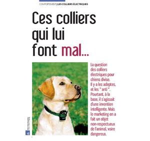 Colliers électriques pour chiens, document écrit par Julie Willems, comportementaliste du chien Bruxelles