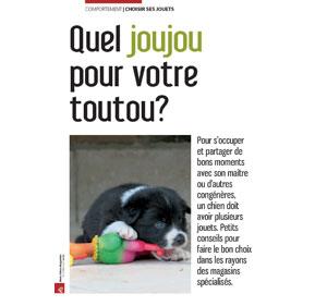 Quel jouet pour chiens, document écrit par Julie Willems, comportementaliste chiens Bruxelles