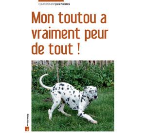 Mon chien a peur, document écrit par Julie Willems, comportementaliste du chien Bxl