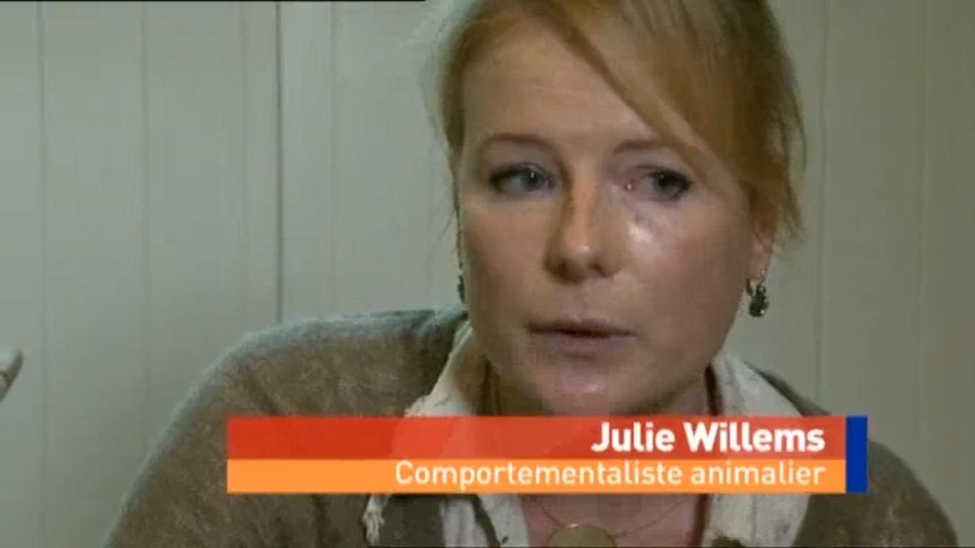 Emission Image à l'appui avec Julie Willems, comportementaliste animalier