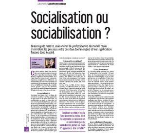 Socialisation ou sociabilisation ?