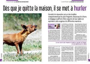 Mon chien hurle en mon absence, document rédigé par Julie Willems, comportementaliste chiens Bruxelles