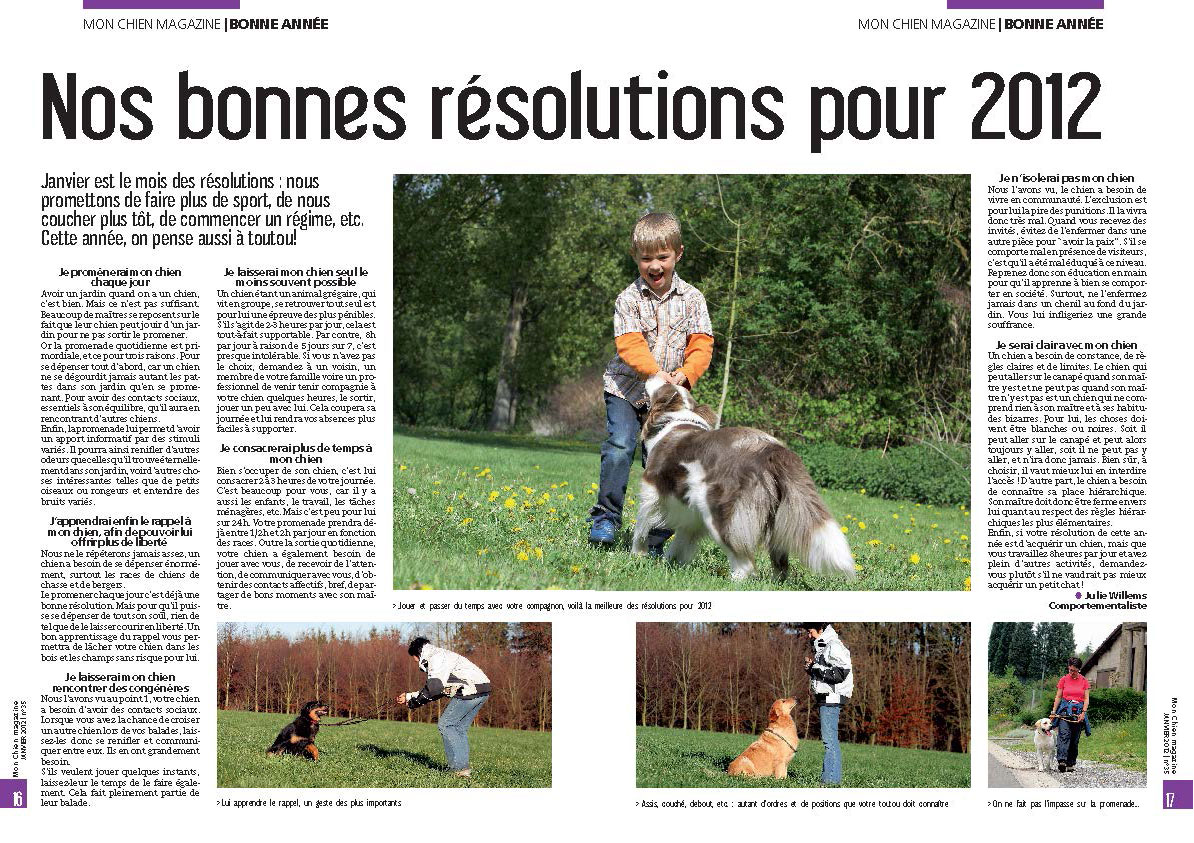Résolutions avec son chien, document rédigé par Julie Willems, comportementaliste animalier sur Bruxelles