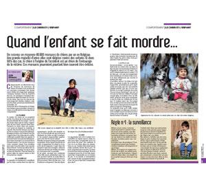 Mon enfant s'est fait mordre, document rédigé par Julie Willems, comportementaliste pour chiens sur Bruxelles