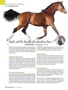 Besoins du cheval en hiver - article - Plus Magazine novembre 2014