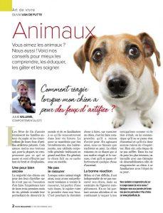 la peur des feux d'artifice chez le chien, article rédigé par Julie Willems, comportementaliste canin à Auderghem