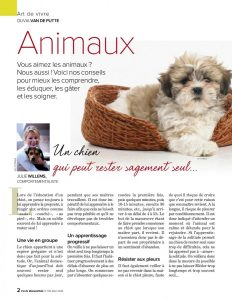 Article rédigé par Julie Willems, comportementaliste pour chiens sur Auderghem