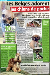 Sud presse chiens de poche-page-001