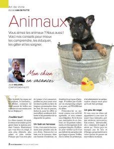 Chien en vacances, article rédigé par Julie Willems, comportementaliste de chien Bxl
