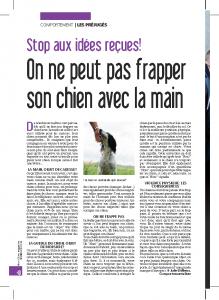 idee recue n°5 - on ne peut utiliser la main pour frapper son chien