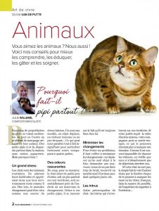 Mon chat fait pipi en dehors de son bac, article rédigé par Julie Willems, comportementaliste chat Bxl