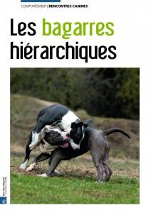 Bagarres hiérarchiques - Mon chien magazine - Novembre 2010_Page_1