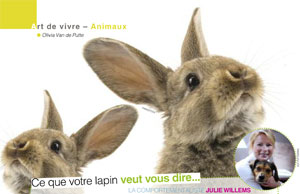 Parler avec son lapin, article rédigé par Julie Willems, comportementaliste lapin