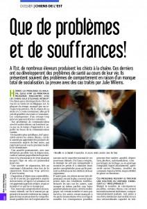 Chiens de l'Est - Mon chien magazine - Septembre 2011_Page_1