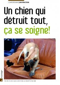 La destruction - Mon chien magazine - Octobre 2009_Page_1