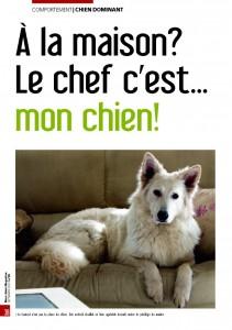 La hiérarchie - Mon chien magazine - Septembre 2009_Page_1