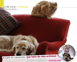 Pension pour chiens et chats, article rédigé par Julie Willems, comportementaliste animalier Auderghem