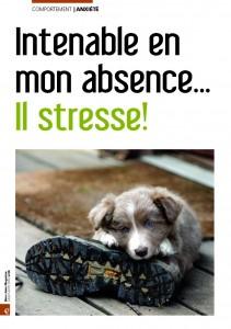 L'anxiété de séparation - Mon chien Magazine - Juillet 2009