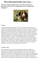 Le gémissement chez le chien - article Pet's Planet - Julie Willems Comportementaliste canin