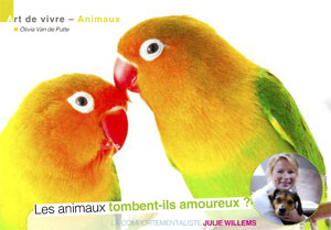 L'amour chez les animaux, article rédigé par Julie Willems, comportementaliste perroquet