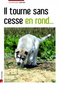 Le toc - Mon chien magazine - Décembre 2012_Page_1
