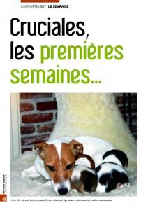 Les premières semaines de vie - Mon chien magazine - Septembre 2010_Page_1