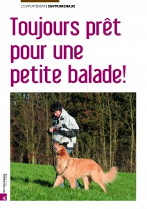 L'importance de la promenade - Mon chien magazine - Juin 2010_Page_1