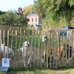 Inauguration d'Animal behaviour center, Julie Willems, comportementaliste pour chien et chat
