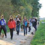 Balade canine - Inauguration du centre de bien-être animal le 04/10/2015