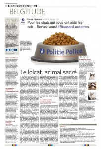 Le lolcat animal sacré - Le Soir - 24 novembre 2015