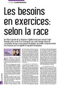 Les besoins en dépense physique en fonction des races - Juillet 2012 - Julie Willems, Mon chien magazine, rubrique comportement Page 1