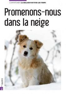 Promenons-nous dans la neige - Mon chien magazine - Rublique comportement - Julie Willems, comportementaliste canin - Janvier 2012