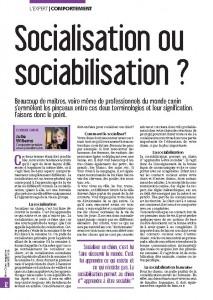 Socialiation ou sociabilisation ? article Mon Chien magazine - mai 2015 - Julie Willems, Comportementaliste canin