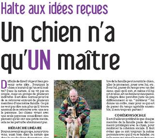 Un chien n'a qu'un maître, document écrit par Julie Willems, comportementaliste des chiens sur Bxl