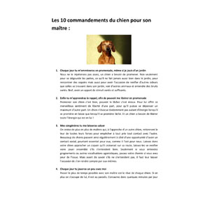 Commandements du chien, document écrit par Julie Willems, comportementaliste chiens sur Bruxelles