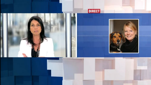 Chiens en laisse, interview de Julie Willems, comportementaliste canin à Bruxelles