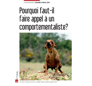 Comportementaliste pour chien, document rédigé par Julie Willems, comportementaliste Bruxelles