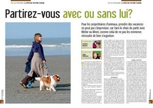 Vacances avec ou sans son chien, document rédigé par Julie Willems, comportementaliste chiens sur Bruxelles