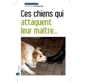 Chiens qui attaquent leur maître, document écrit par Julie Willems, comportementaliste chiens sur Bruxelles