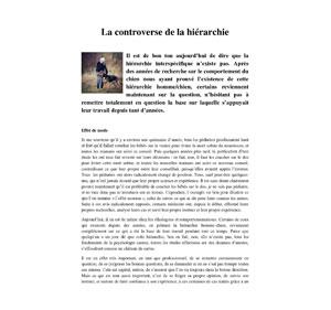 La hiérarchie chez le chien, article écrit par Julie Willems, comportementaliste pour chiens sur Bruxelles