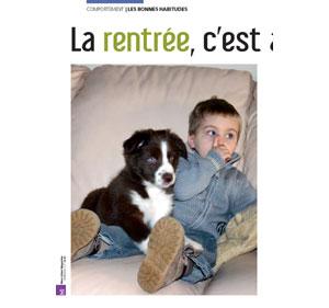 retour des vacances avec son chien, document rédigé par Julie Willems, comportementaliste chiens à Bruxelles