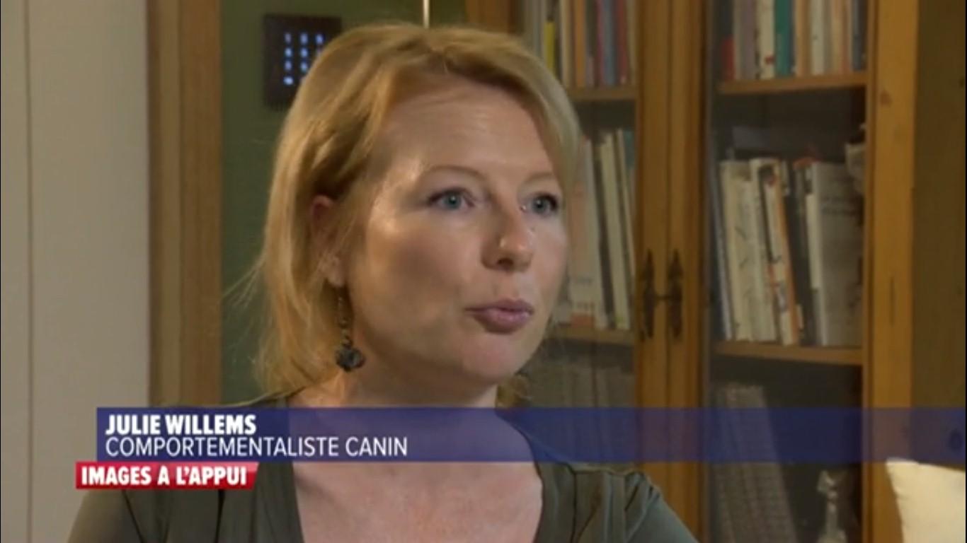 Chien méchant, émission Images à l'appui avec Julie Willems, comportementaliste canin