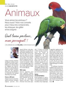perroquet, Article rédigé par Julie Willems, éthologue-comportementaliste canin