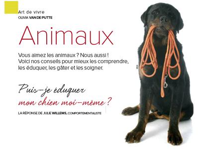 éduquer mon chien, Article écrit par Julie Willems, éthologue-comportementaliste canin