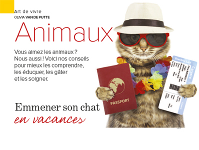 vacances avec son chat, Article de Julie Willems, éthologue-comportementaliste canin