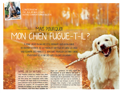 mon chien fugue, Article de Julie Willems, éthologue-comportementaliste canin