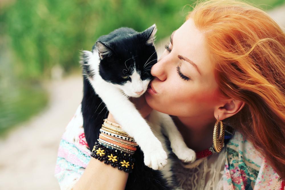Vacances pour chat, article écrit pour Viyo par Julie Willems, comportementaliste canin