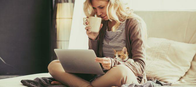 Accueillir un chat à la maison
