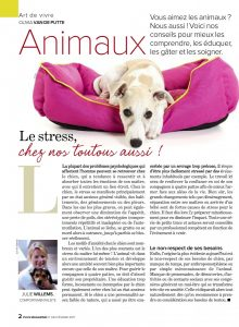 mon chien est stressé, Article rédigé par Julie Willems, comportementaliste canin