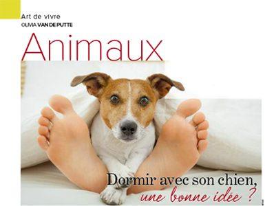 Dormir avec son chien, une bonne idée?